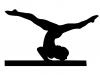 gymnastics collection